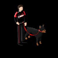 GUARD-DOG-S3.png